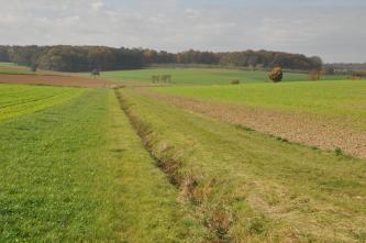 Das Bild zeigt flache, nur leicht nach links und rechts ansteigende Acker- und Grünlandflächen, die in der Mitte ein dünner Graben durchtrennt. Im Hintergrund sind Waldgebiete erkennbar.