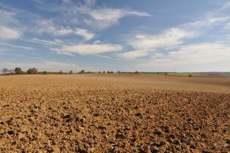 Das Bild zeigt eine weite, rötlich braune Ackerfläche, die sich in flachen Wellen bis zum Horizont fortsetzt.