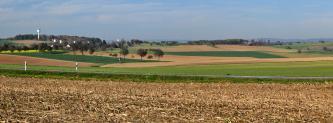 Blick über eine weite, von wenigen Bäumen durchzogene, leicht vertiefte Ackerlandschaft. Im Vordergrund breitet sich ein Stoppelacker aus; im Hintergrund links ist ein flacher bewaldeter Hügel erkennbar.