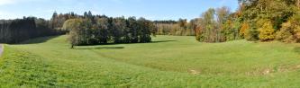 Das Bild zeigt wellige, zur Mitte hin vertiefte Grünflächen, die von einem bogenförmig verlaufenden Graben getrennt sind. Links in der Bildmitte steht eine Baumgruppe; am Rand der Grünflächen entlang zieht sich Wald.