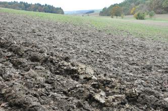 Das Bild zeigt eine nach rechts geneigte, umgepflügte gelbgraue Ackerfläche, in die sich im Hintergrund Grün mischt. Rechts ist zudem ein bewaldeter Gegenhang erkennbar.