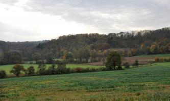 Das Bild zeigt einen leicht nach rechts ansteigenden, begrünten Acker; begrenzt von Gehölzstreifen. Ebenfalls rechts folgt eine mit Schilf bestandene Fläche. Den Abschluss bilden zum Teil steile, bewaldete Hänge.