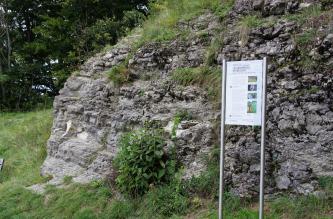 Blick auf einen gewölbten, nach rechts ansteigenden Gesteinshügel. Das graue Gestein ist teilweise bewachsen. Rechts vorne steht eine bebilderte Hinweistafel. Links im Hintergrund ist Wald erkennbar.