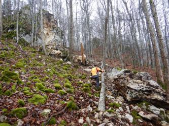 Zu sehen ist ein steiler, nach rechts abfallender Waldhang. Links oben und rechts vorne ist Felsgestein abgerutscht. Ein umgestürzter Baum nahe der Bildmitte wird von einem Arbeiter vermessen.