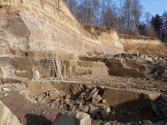 Blick in einen Steinbruch aus gelblich-beigem Gestein mit teilweise rötlichen und hellen Lagen. Der Steinbruch besteht aus meheren Stufen. Im Hintergrund sind kahle Bäume zu sehen.