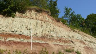 Blick auf einer Abbauwand: Das anstehende, nach rechts abfallende Gestein zeigt eine Wechselfolge aus rotbraunen und hellgrau-beigen Gesteinsschichten. Links vor der Wand befindet sich ein Maßstab. Oben und rechts wachsen Büsche und Bäume.