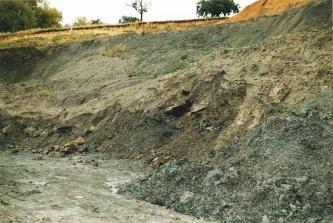 Blick in eine ehemnalige Tongrube, welche sich zur linken Bildseite hin öffnet. Das anstehende Gestein ist geschichtet, im unteren Drittel ist es dunkelgrau, darüber schmutzig beige und darüber wieder grau.