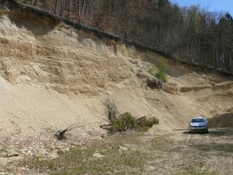 Blick auf eine hellbraune, nach rechts abfallende Abbauwand. Am Fuß der Wand liegen Schutthaufen sowie umgestürzte Bäume. Die leicht nach vorn geneigte Kante der Wand ist bewaldet.