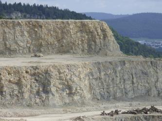 Das Bild zeigt zwei gestufte Sohlen eines Steinbruches. Das Gestein der unteren Sohle ist hellbraun bis grau. Die obere Sohle ist hellbraun gefärbt und weist schräg geschichtete Lagen auf. Im Hintergrund Wald und bewaldete Berge.