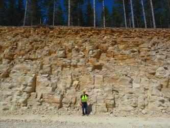 Blick auf eine Steinbruchwand aus dickbankigen, hellen, etwas orange angewitterten Kalksteinen. Die Wand ist etwa 8 Meter hoch, davor steht ein Mensch mit gelber Warnweste. Über der Wand wachsen Bäume.