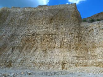 Blick von unten auf eine hohe Abbauwand aus geschichteten, unterschiedlich hellen Kalksteinen.