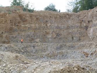Blick auf eine Abbaufront eines Steinbruchs. Die Wand ist mehrere Zehnermeter hoch und besteht aus beigem, bankigem Gestein. Links unten steht ein Mensch vor der Wand.