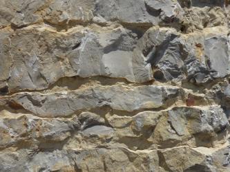 Detailaufnahme eines Plattenkalks. Das hellgraue Gestein ist plattig, dicht und etwas geklüftet.