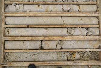 Das Bild zeigt einen Bohrkern, aufgeteilt in mehrere nebeineinander liegende Kästen, aus beige-hellgrauem Kalkstein. Der Bohrkern ist etwas zerbrochen.