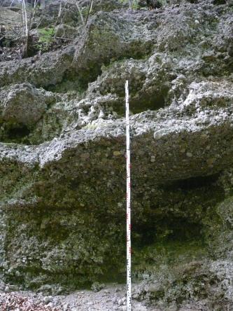 Blick auf eine grünlich graue Gesteinswand mit wellenförmigen Ausbuchtungen. Kleine und größere Gesteinsbrocken sind hier fest verbacken.
