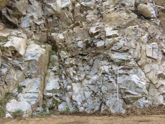 Blick auf eine Abbauwand eines Steinbruchs. Das anstehende Gestein ist hell- bis mittelgrau, sehr heterogen und stark deformiert. Vor der hohen Wand steht ein Maßstab.