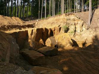 Blick in einen Steinbruch, der sich nach rechts vorne öffnet. Das Gestein ist gelb bis orange und weist ein weitständiges Kluftsystem aud. Auf dem Boden liegen einige größere Blöcke. Im Hintergrund ist Wald zu erkennen.