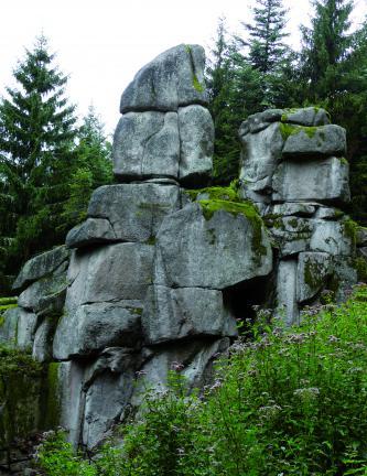 Das Bild zeigt eine Auftürmung von mehreren großen Gesteinsblöcken im Wald. Das Gestein ist mittel- bis dunkelgrau, im Vordergrund befinden sich Büsche, im Hintergrund Nadelbäume.