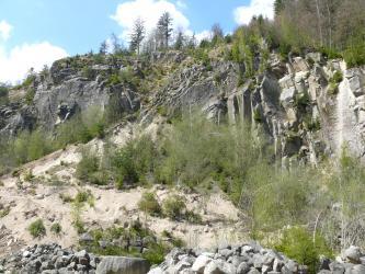 Der Forbach-Granit (GFO) und die als Raumünzach-Granit bezeichnete Varietät gehören zu den Zweiglimmergraniten des Nordschwarzwalds.
