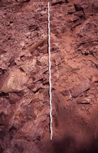 Nahaufnahme von rötlichem Gestein. Feine und gröbere Schichten verlaufen dabei bogenförmig übereinander.