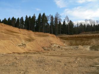 Das Bild zeigt die linke und die hintere Abbauwand sowie den Boden einer Sandgrube. Das rötlich braune Material ist teils horizontal, teils schräg geschichtet. Auf den Kuppen steht Wald.