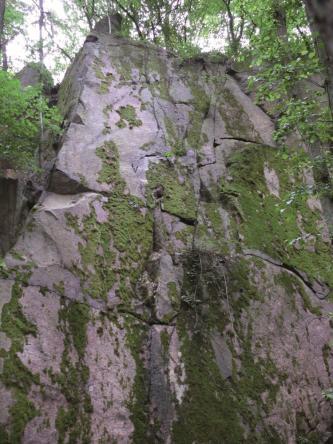 Blick auf eine hohe, von horizontal und vertikal verlaufenden Klüften durchzogene Felswand aus Granit. Das violettgrau gefärbte Gestein ist bemoost und von Bäumen umstanden.