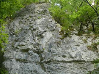 Das Bild zeigt eine größere, freiliegende Felswand. Das Gestein ist grau mit leichten Schattierungen. Unten und oben verlaufen waagrechte Einkerbungen, in der Mitte führen sie senkrecht hinauf. An den Seiten wachsen Bäume.