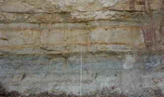 Blick auf eine Steinbruchwand mit verschiedenen Lagen. Die unterste Lage ist grau mit bläulichen Streifen. Die mittlere und oberste Lage ist jeweils hellbraun bis grau mit orangen Streifen und rötlichen Flecken. Die dritte Lage ist zudem dünner gebankt.