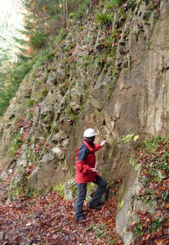 Eine Person mit Schutzhelm und rotem Anorak steht vor einer graubraunen, steil aufragenden Gesteinswand.