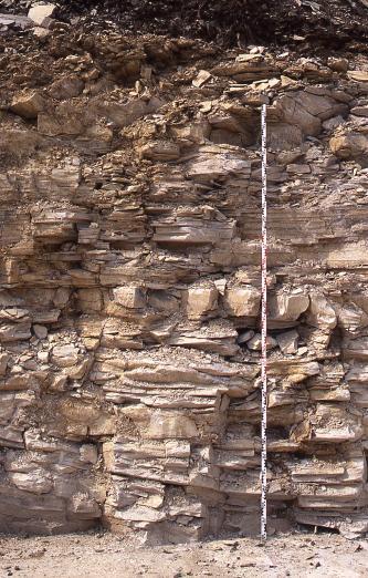 Blick auf eine Aufschlusswand mit feinplattigen und gröberen Lagen. Das Gestein ist rötlich grau bis rötlich braun. Rechts ist eine Messlatte angelehnt.