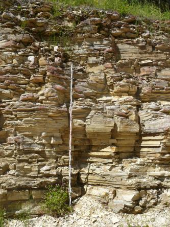 Blick auf eine Steinbruchwand mit fein geschichtetem, plattigem Gestein.