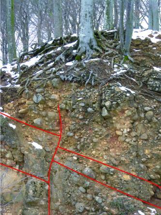 Das Bild zeigt eine Wand aus konglomeratischem Gestein mit Geröllen unterschiedlicher Größe. Das Schichteinfallen wird durch rote Linien gekennzeichnet, die Schichten fallen zum rechten Bildrand ein. Über der Wand ist verschneiter, kahler Wald zu sehen.
