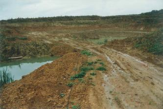 Das Bild zeigt eine große Tongrube. Der anstehende Ton ist hell- bis mittelbraun, am linken Bildrand sieht man Wasser auf der Abbausohle. Im Hintergrund ist Wald zu erkennen.