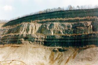 Blick auf eine Abbauwand mit deutlicher Schichtung: Ganz oben befinden sich graue Gesteine, darunter gelbliche, gebankte Gesteine und darunter dunkelgraue Schichten. Das unterste Drittel der Wand ist durch hellgelben Hangschutt verdeckt.