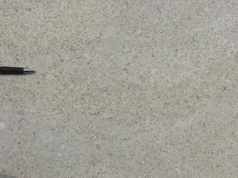 Nahaufnahme einer polierten Gesteinsplatte. In der bräunlich grauen Oberfläche sind zahlreiche bläuliche Linsen eingearbeitet. Links am Bildrand dient die Spitze eines Kugelschreibers als Größenvergleich.