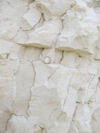 Teilansicht von weißlichem Kalkstein. Das Gestein weist Risse und Verwerfungen auf. Im oberen Bildteil ist eine schmale, quer verlaufende Rinne eingetieft; eine dort abgelegte Euromünze dient als Größenvergleich.