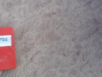 Nahaufnahme einer bräunlich grauen Gesteinsoberfläche mit Sägespuren. Links dient ein aufgelegtes Notizbuch als Größenvergleich.