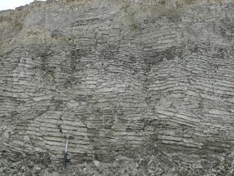 Detailaufnahme eines fein geschichteten, hell- bis mittelgrauen Gesteins. Die Schichten verlaufen horizontal.