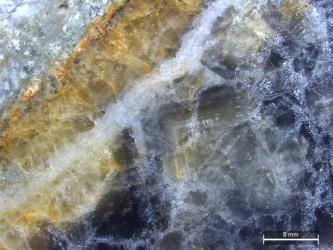 Vergrößerte Aufnahme einer glatt geschliffenen Gesteinsoberfläche mit blauer Kristallstruktur rechts sowie schräg laufenden Bahnen in Hellbraun, Gelb und Weiß auf der linken Seite.