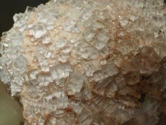 Vergrößerte Aufnahme von milchig-durchsichtigen Kristallwürfeln, die auf der Oberfläche bräunlicheren Materials angesiedelt sind.