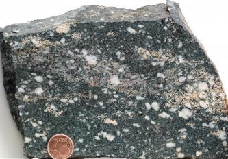 Detailaufnahme eines Gestein-Handstücks. Das Gestein hat eine dunkelgraue Grundmasse, in welche viele weiße, eckige Kristalle eingebettet sind. Links unten liegt eine 1-Cent-Münze auf dem Gesteinsstück als Maßstab.