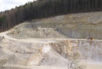 Blick auf eine abgestufte, nach links abfallende hellgraue bis bräunliche Steinbruchwand mit Abraumhaufen und einem Fahrweg. Die gerundete Kuppe ist mit Nadelbäumen bewachsen.