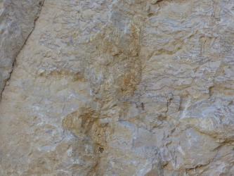 Blick auf eine leicht nach rechts geneigte rosagraue, raue Gesteinsoberfläche. In der Bildmitte sind bräunliche Verfärbungen und davon ausgehende Streifen zu erkennen.