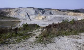 Blick in einen Steinbruch, in welchem hellgraues, an manchen Stellen gelbliches Gestein in mehreren Stufen abgebaut wird. Im Vordergrund befinden sich einige Büsche.