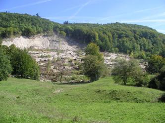 Das Bild zeigt einen von links nach rechts geneigten, bewaldeten Hang, dessen seitliche Kante zum Vordergrund hin abgerutscht ist. Loses Erdreich und Schotter sowie umgestürzte oder abgeknickte Bäume liegen darauf verstreut.