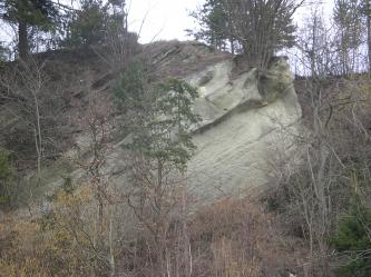 Im Zentrum befindet sich eine Felsnase aus gräulich bis beigem Gestein. Eine Schrägschichtung von etwa 30° ist erkennbar. Im Vordergrund lichte Bewaldung.