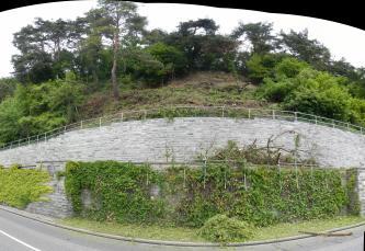 Im Vordergrund befindet sich eine Straße, an die sich eine graue Mauer anschließt. Die Mauer umfasst den dahinter liegenden Hang, der mittig frei von Baumbewuchs ist.