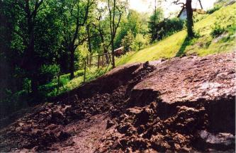 Auf dem Bild ist ein Hang zu sehen, der im unteren Teil aufgerissen und abgerutscht, und daher vegetationslos (rötlichbraun) ist. Der obere Hang ist bewachsen. Im Hintergrund befinden sich ein Haus und einige Bäume.