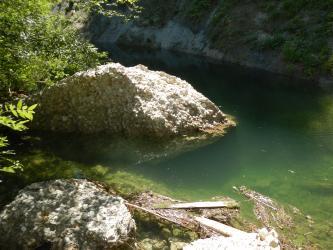 Der Blick richtet sich auf ein grün-bläuliches Gewässer, welches direkt an eine Felswand angrenzt. Im Gewässer befindet sich ein Felsblock. Am linken Rand ragen einige Zweige ins Bild.