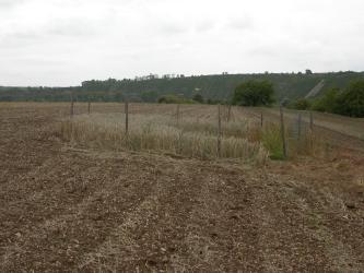 Im Vordergrund befindet sich ein steiniger, umgepflügter Acker mit einer runden, umzäunten Senke. Im Hintergrund ist ein terrassierter Hang zu sehen.